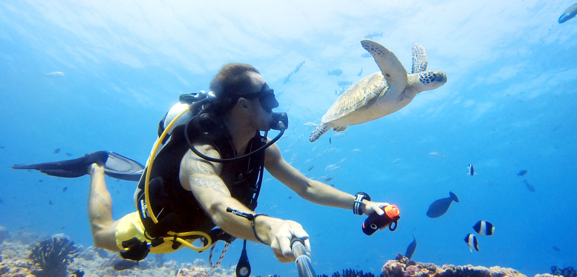 Diver swimming among the turtles in the glistening waters of the indian ocean.